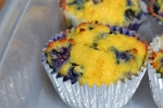 Blueberry Lemon Protein Muffins!